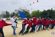 의성남부초 한마음 체육대회 개최.jpg