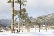 5.국립백두대간수목원 잔디언덕 설경.jpg