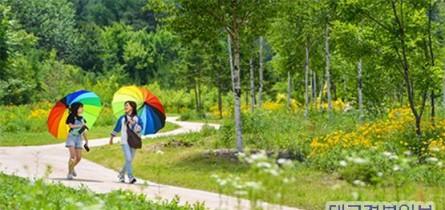 봉화군 일원 백두대간 자생 식물 활용 축제 개최.jpg